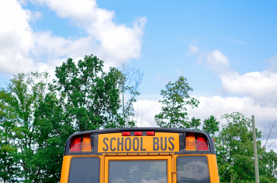 back of school bus on sunny day